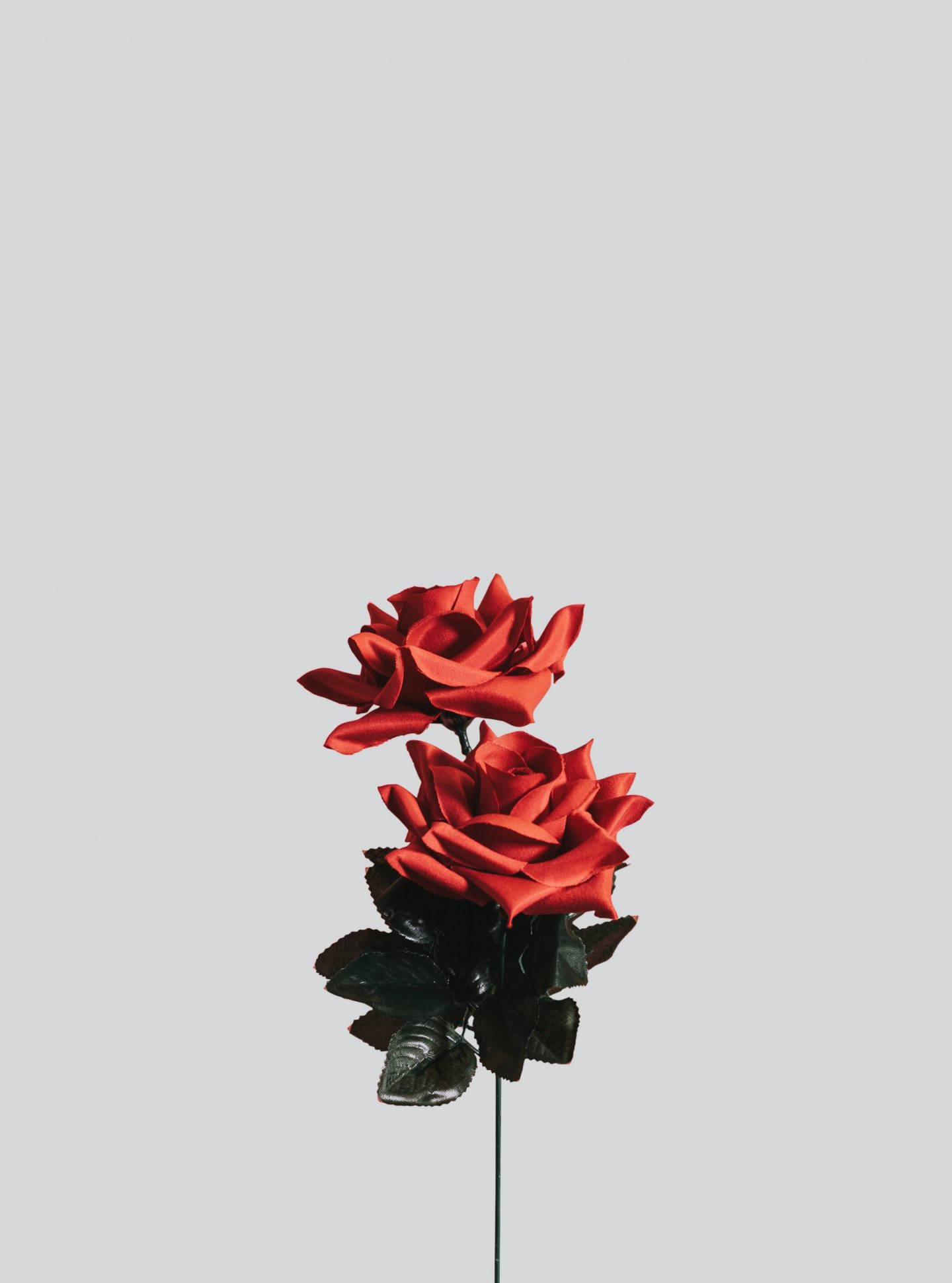 Artificial rose